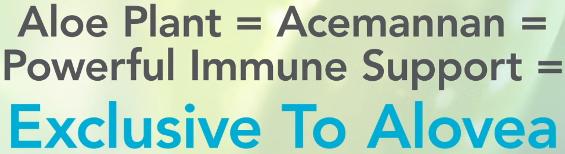 alovea immune enhancing